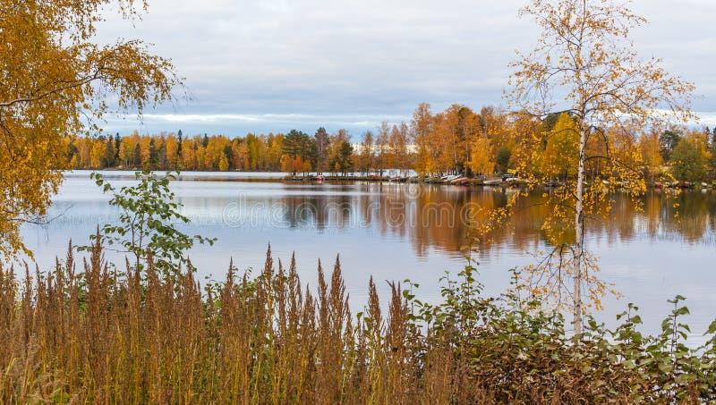 Herbst in Tampere Finnland lizenzfreies stockbild