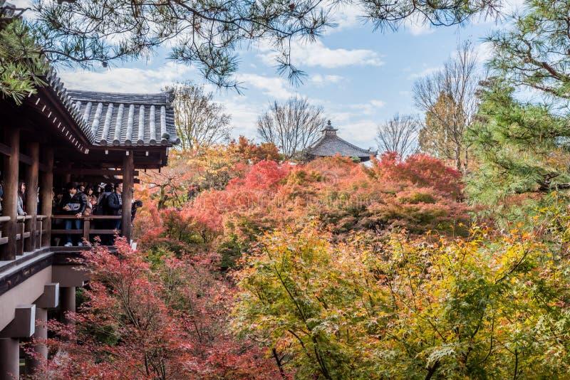 Herbst an tofukuji Tempel lizenzfreies stockfoto