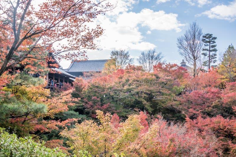 Herbst an tofukuji Tempel stockfotografie
