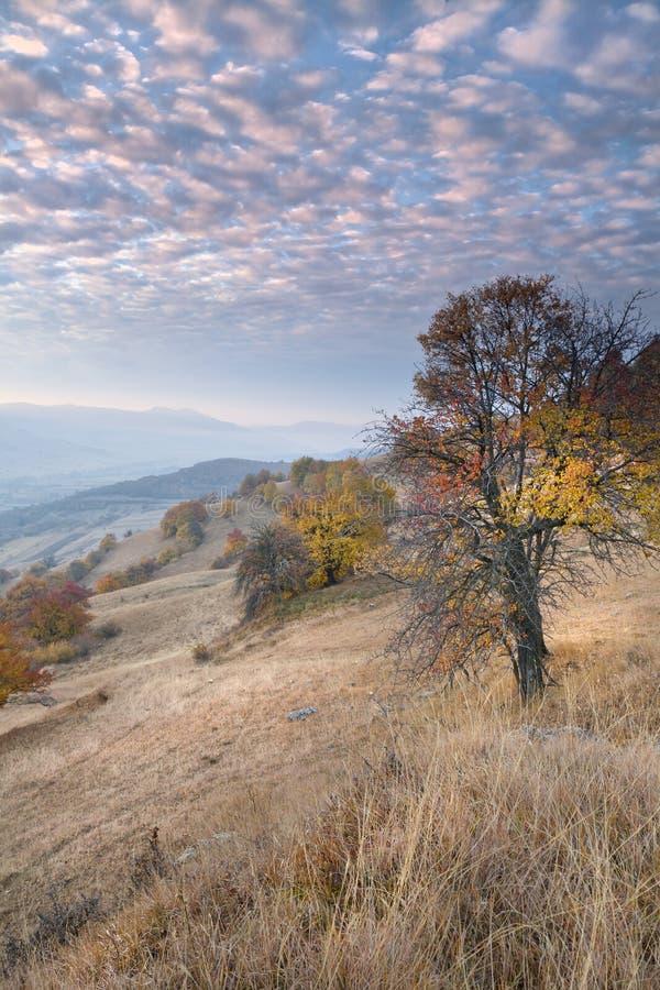 Herbst in Transylvanien 2 lizenzfreie stockfotos