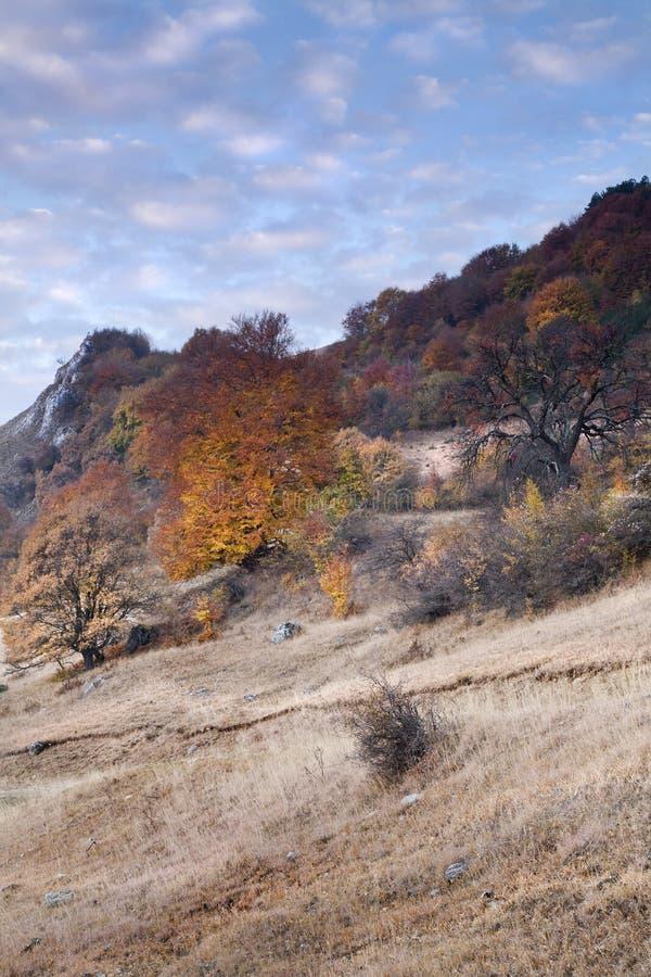 Herbst in Transylvanien stockbild