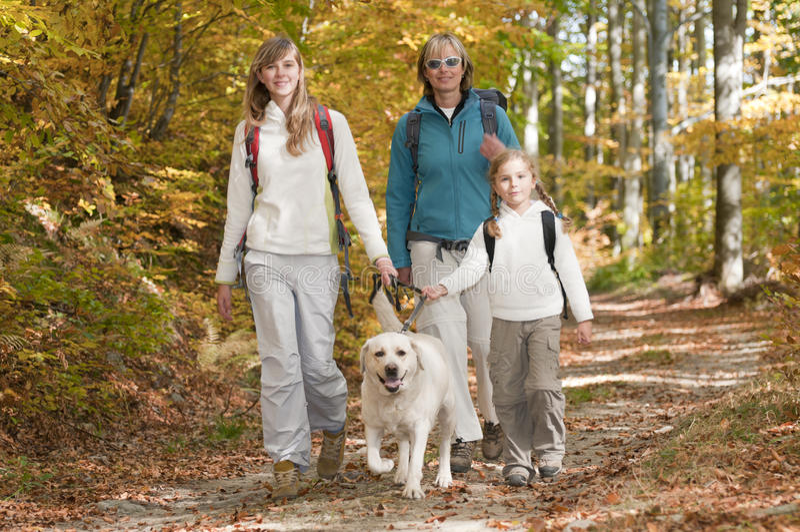 Herbst-Trekking mit Hund stockfotografie