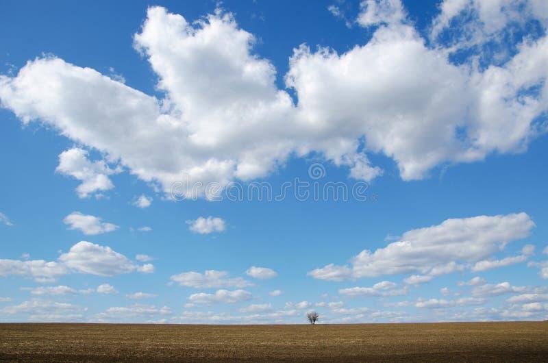Herbst und sonniger Tag stockfoto
