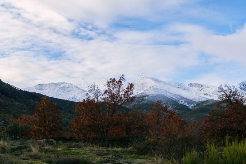 Herbst- und Winterkontrast an einem kalten Tag stockfoto