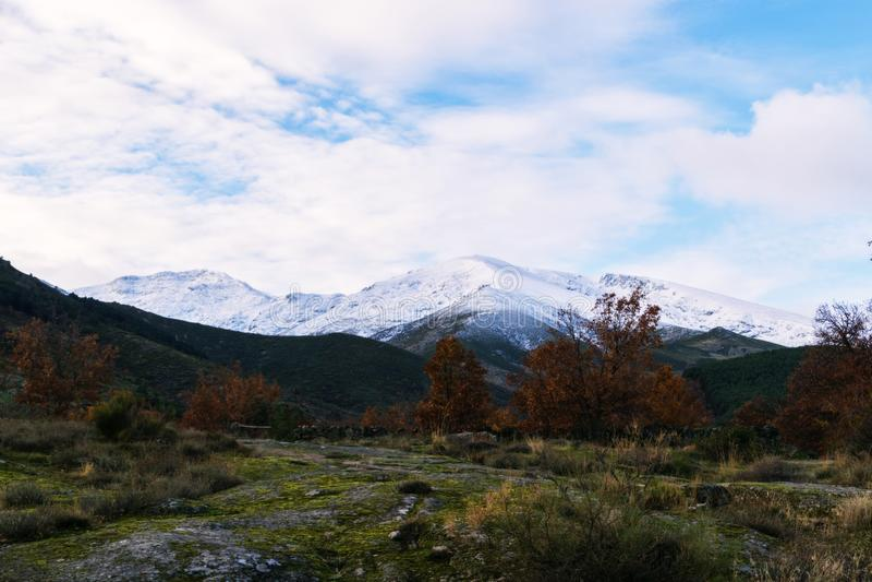 Herbst- und Winterkontrast an einem kalten Tag lizenzfreies stockfoto