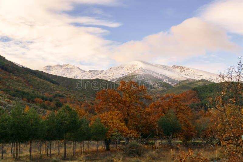 Herbst- und Winterkontrast an einem kalten Tag lizenzfreie stockbilder