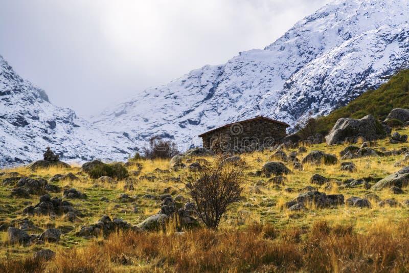 Herbst- und Winterkontrast an einem kalten Tag lizenzfreies stockbild