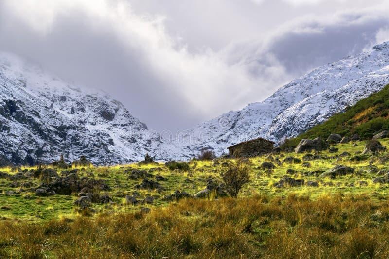 Herbst- und Winterkontrast an einem kalten Tag stockbilder
