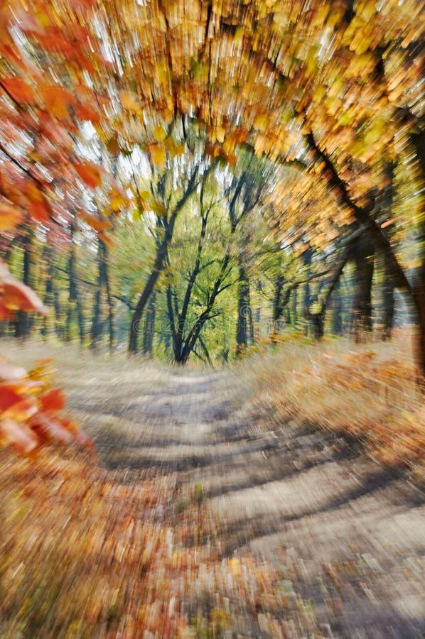 Herbst unscharfer abstrakter Hintergrund der Bewegung Zoom lizenzfreies stockbild