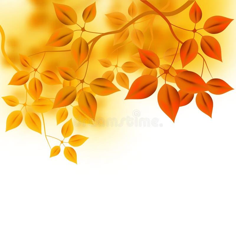 Herbst-Waldhintergrund stock abbildung