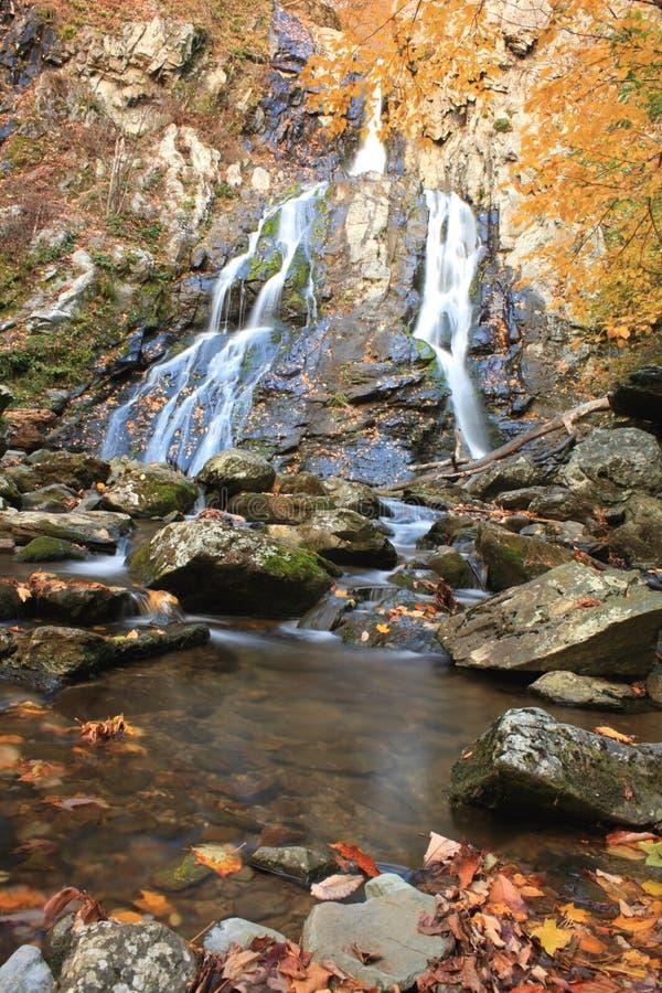 Herbst-Wasserfall lizenzfreie stockfotos