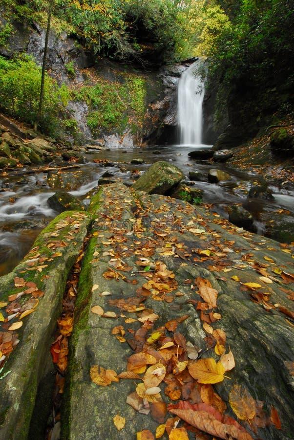 Herbst-Wasserfall in Westnord-carolina stockfotos