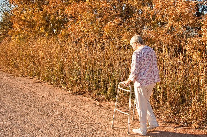 Herbst-Weg lizenzfreie stockfotos
