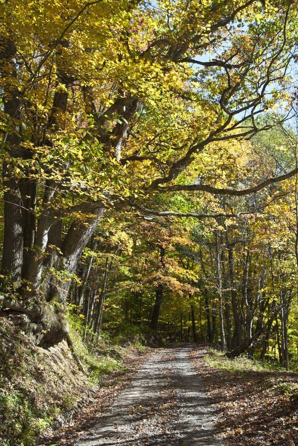 Herbst in West Virginia stockbilder