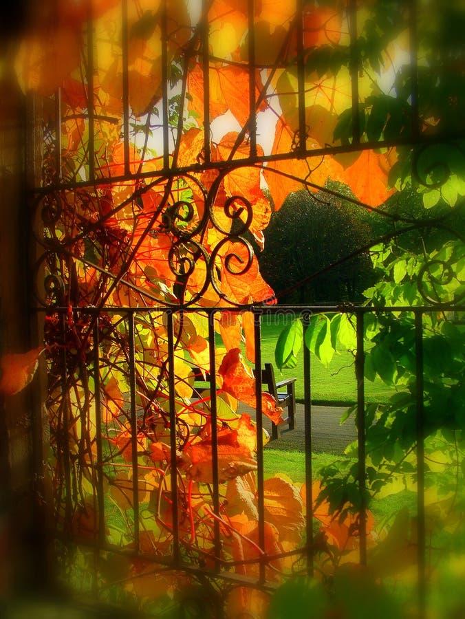 Herbst an worden Park lizenzfreie stockfotos