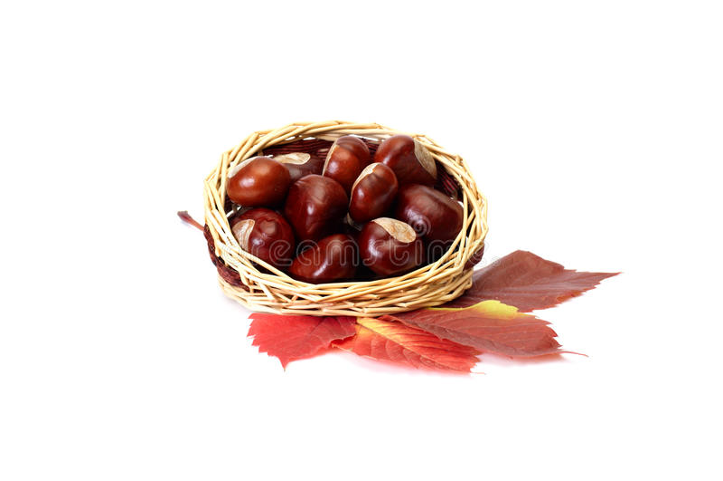 Herbstabbildung der Blätter und der Kastanien. stockfotografie
