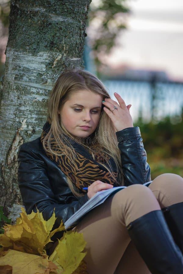 Herbstabend lizenzfreie stockfotografie