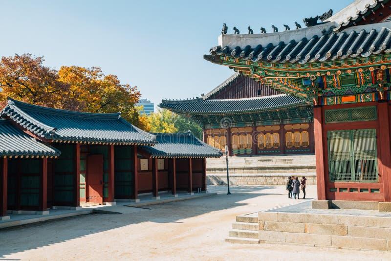 Herbstahorn und koreanische traditionelle Architektur an Deoksugungs-Palast stockbild