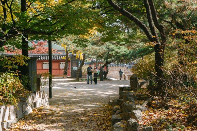 Herbstahorn und koreanische traditionelle Architektur an Deoksugungs-Palast lizenzfreies stockbild