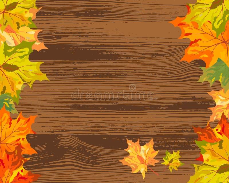Herbstahornholz Stockfotografie