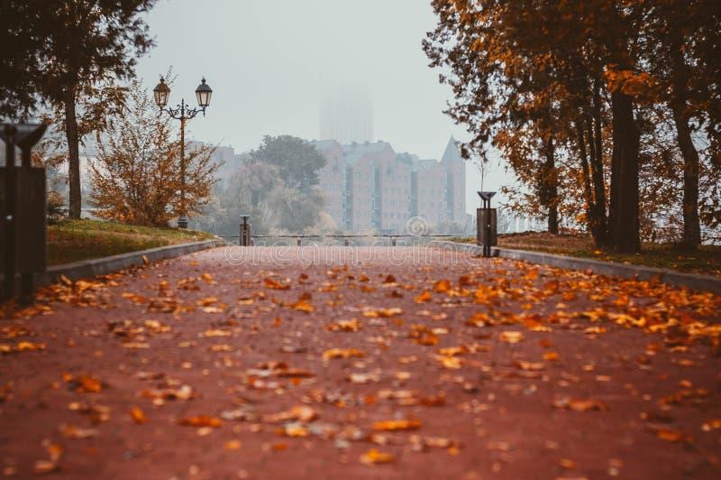 Herbstallee gestreut mit Blättern stockbild