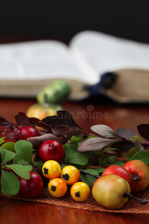 Herbstanordnung und die Bibel lizenzfreies stockfoto