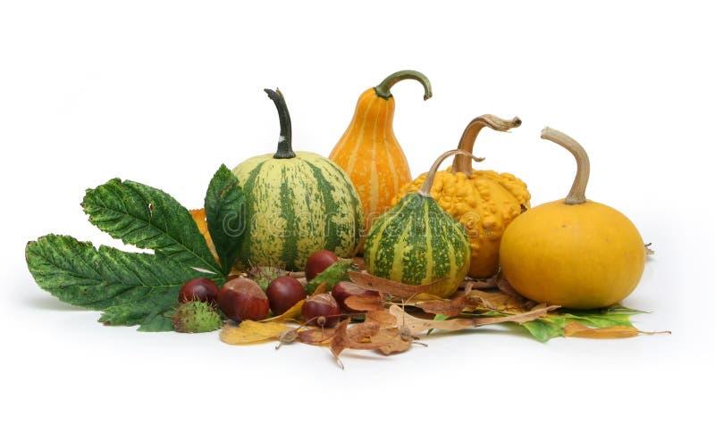 Herbstansammlung 2 stockfotografie