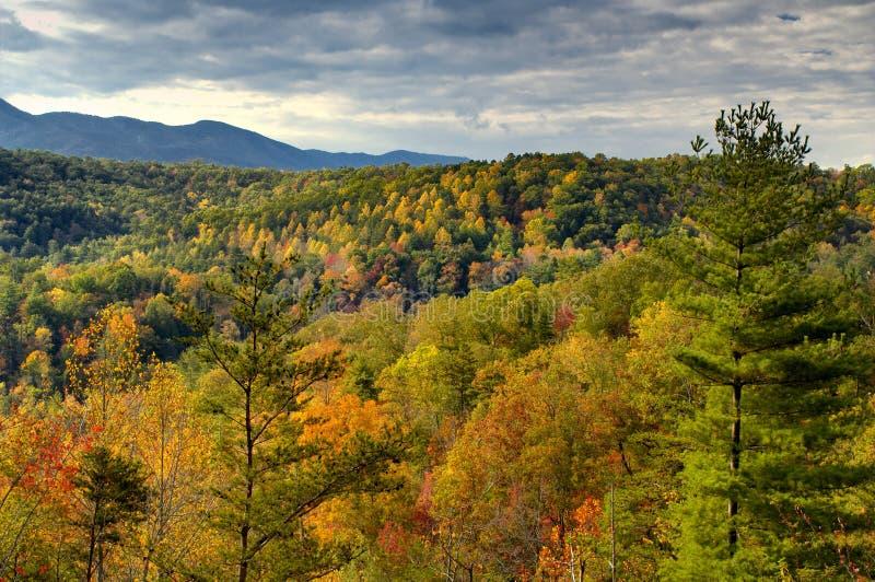 Herbstansicht über Cherohala Skyway im North Carolina, USA lizenzfreie stockbilder