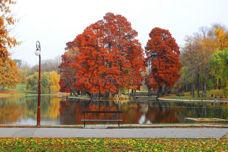 Herbstansicht an Craiova-Park stockfotos