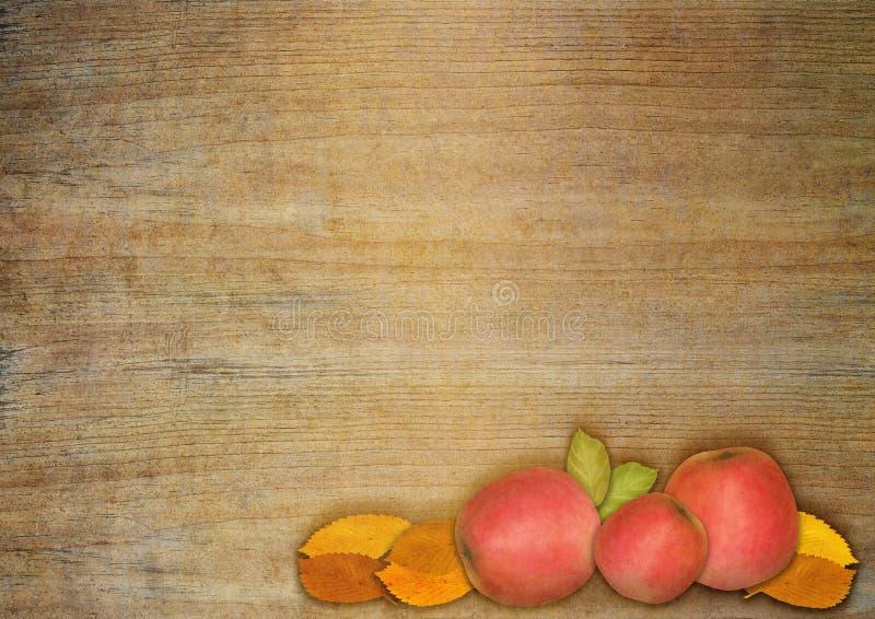 Herbstapfel und -blätter lizenzfreie abbildung