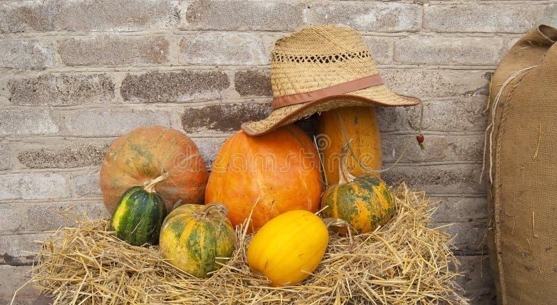 Herbstaufbau von den verschiedenen Kürbisen stockbilder