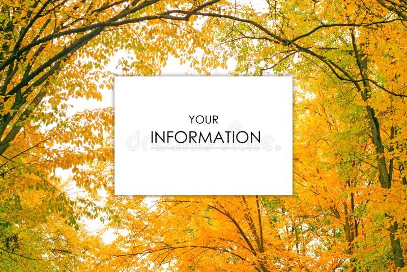 Herbstbäume gestalten Ansicht von gelben roten orange Blättern landschaftlich lizenzfreies stockbild