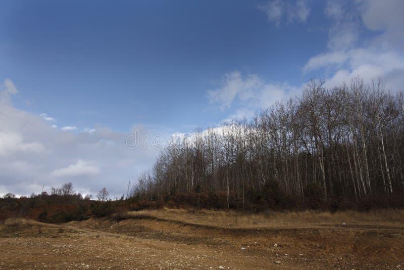 Herbstbäume in Mavrovo lizenzfreie stockfotos