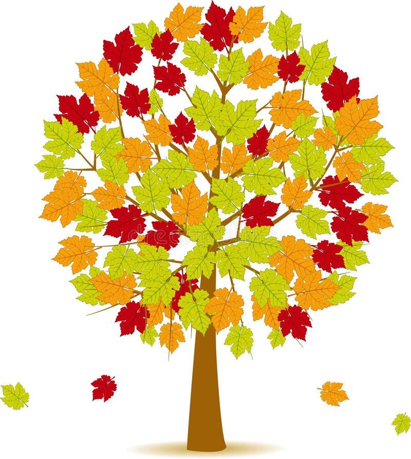 Herbstbaum 14 lizenzfreie abbildung
