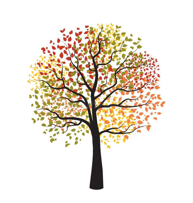 Herbstbaum mit fallenden Blättern vektor abbildung