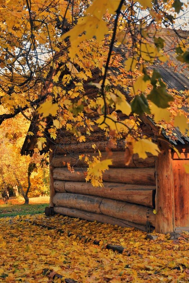 Herbstbeschaffenheit und Architektur von Kolomenskoye-Park in Moskau lizenzfreies stockbild