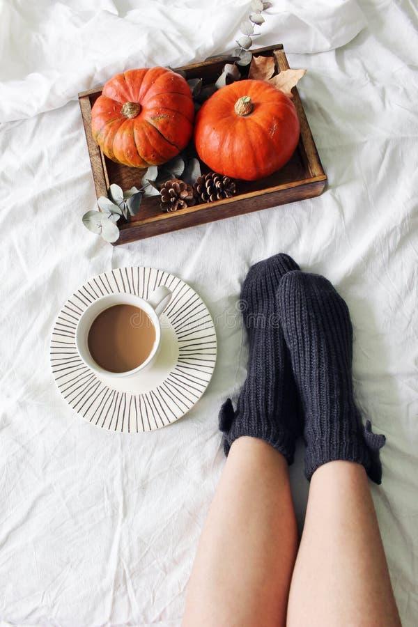 Herbstbettstillleben Weibliche Beine in gestrickten Socken und in Tasse Kaffee Hölzerner Behälter mit Kürbisen, Eukalyptusblätter lizenzfreie stockbilder