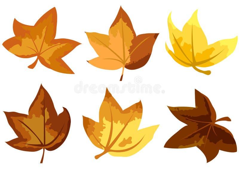 Herbstblätter vektor abbildung