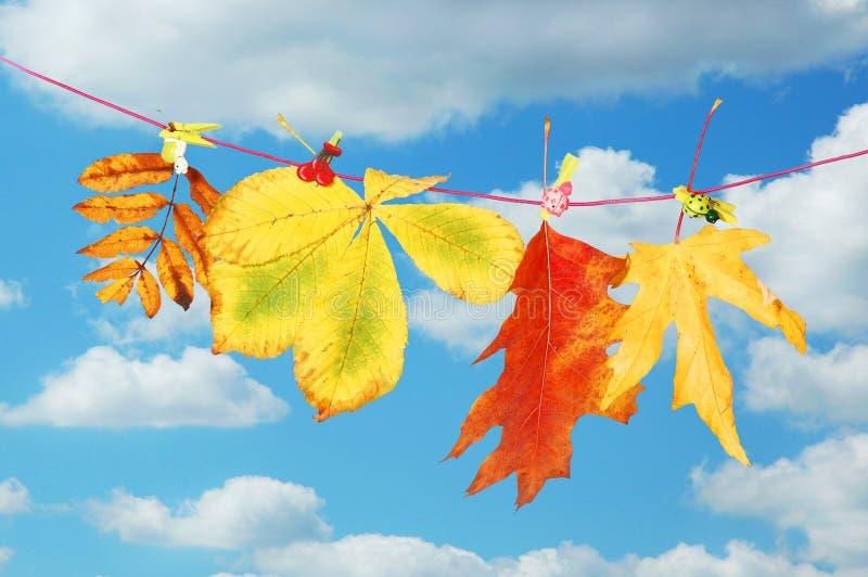 Herbstblätter, die an der Zeichenkette hängen lizenzfreie stockfotografie