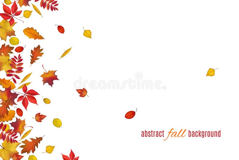 Herbstblätter getrennt auf weißem Hintergrund lizenzfreie abbildung