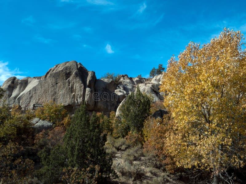 Herbstblättern und Felsen im Beaver Dam State Park lizenzfreies stockfoto