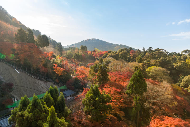 Herbstblatt in Kiyomizu-deratempel stockbild