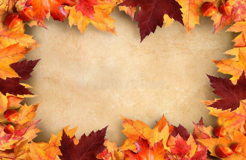 Herbstblattfeld mit Weinlesepapier lizenzfreies stockfoto