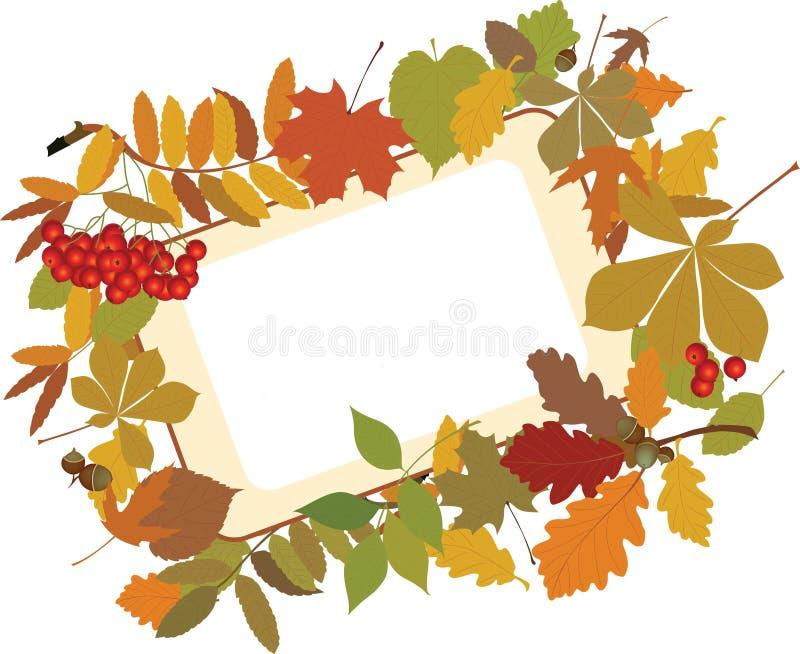 Herbstblumenhintergrund. lizenzfreie abbildung