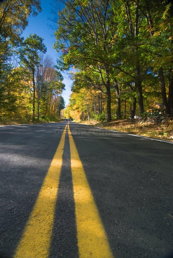 Herbstdatenbahn lizenzfreies stockbild