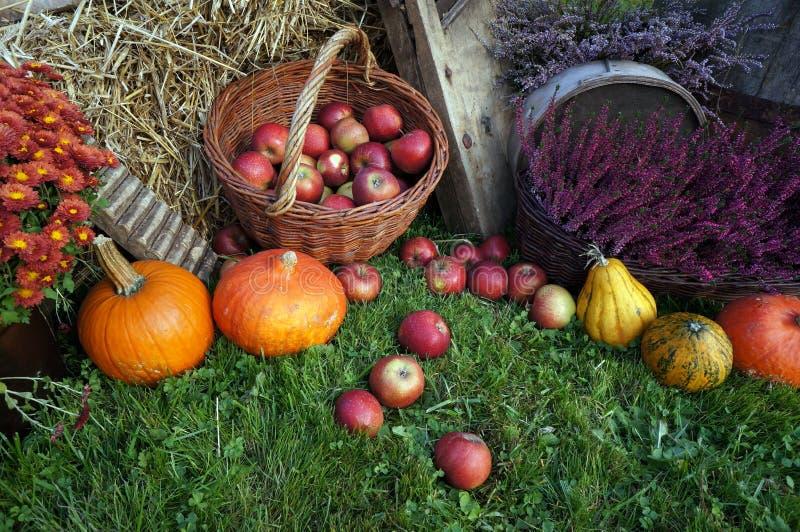 Herbstdekorations-, Rote und Grüneäpfel in einem Weidenkorb auf Stroh, Kürbisen, Kürbis, Heideblumen und Chrysanthemenblumen lizenzfreies stockbild