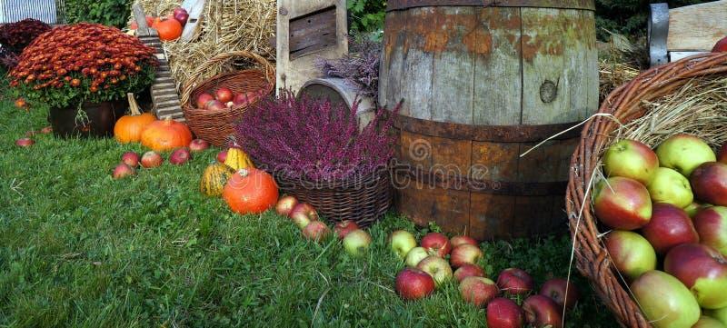 Herbstdekorations-, Rote und Grüneäpfel in einem Weidenkorb auf Stroh, Kürbisen, Kürbis, Heideblumen und Chrysanthemenblumen lizenzfreie stockbilder