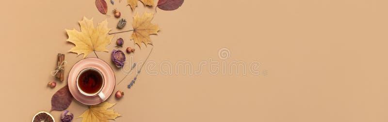 Herbstebenen-Lagezusammensetzung Tasse Tee, trockene helle Blätter des Herbstes, Rosenblumen, orange Kreis, Kegel, dekorativer Gr lizenzfreies stockfoto