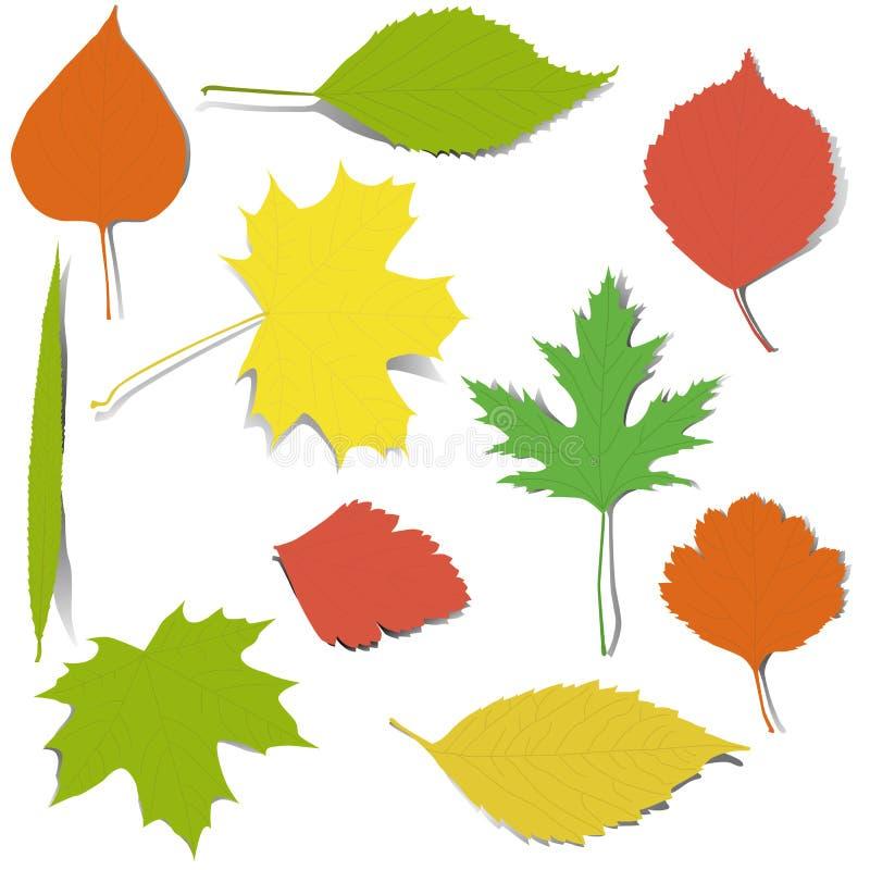 Herbstelemente für Auslegung stockfotografie