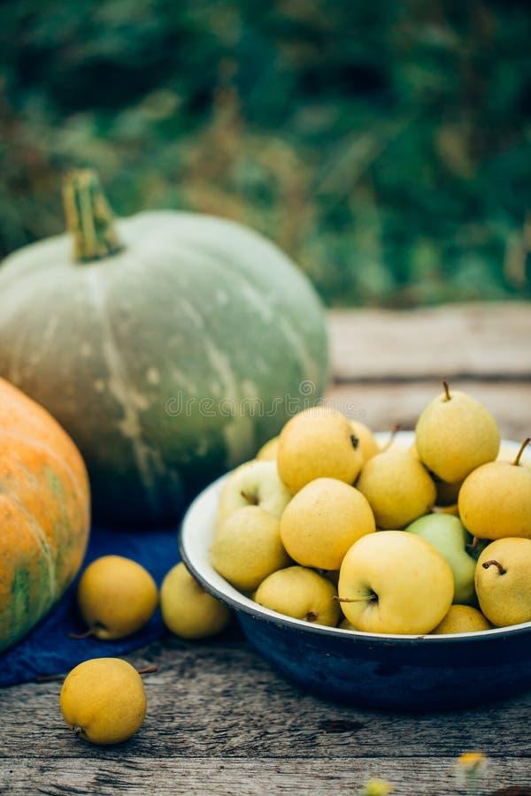 Herbsternteäpfel, -birnen und -kürbise auf einem Holztisch lizenzfreie stockfotos
